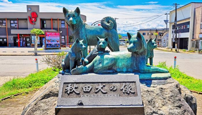 秋田県で空き家の売却や買取に強い不動産会社を探す
